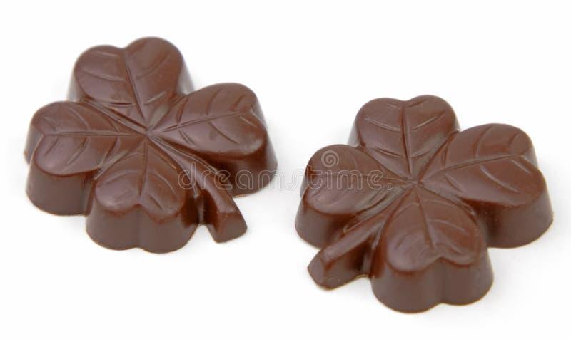 巧克力三叶草 库存图片