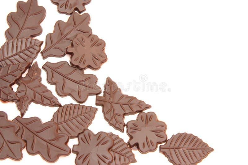 巧克力叶子 库存照片