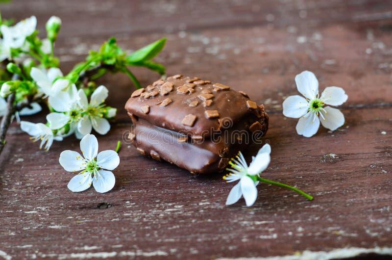 巧克力坚果果仁巧克力蛋糕 库存图片