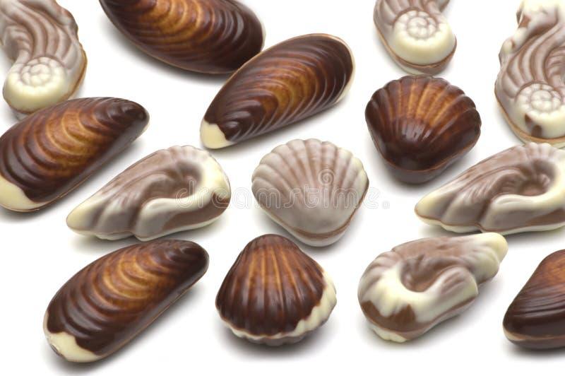 巧克力壳 图库摄影