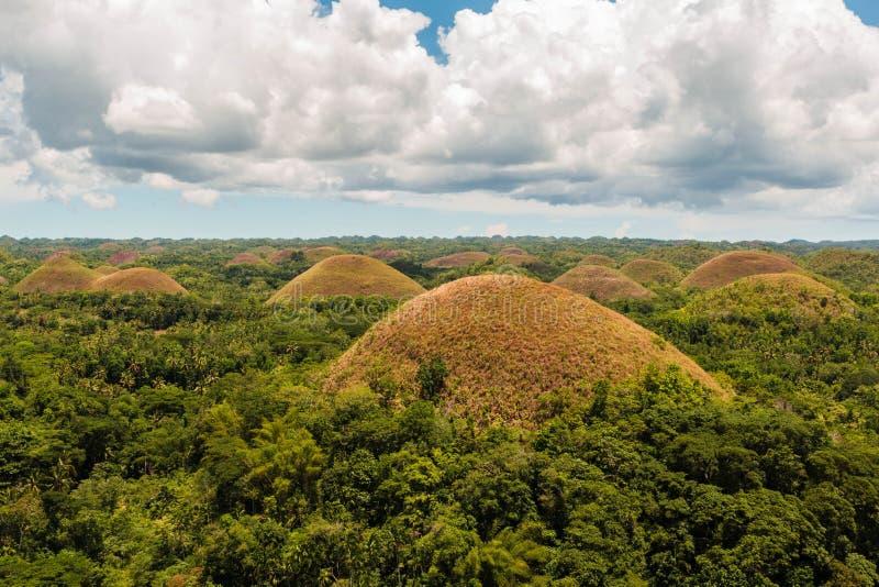 巧克力小山在保和省,菲律宾 数百令人惊讶的风景棕色小山 免版税库存照片