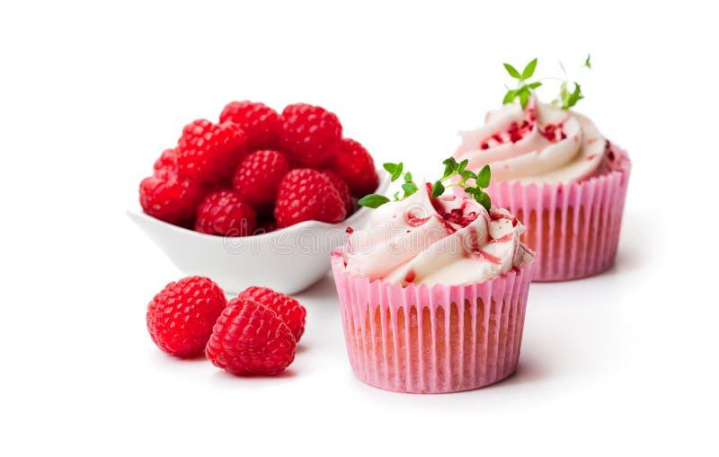 巧克力杯形蛋糕用新鲜的被隔绝的莓和奶油  免版税库存照片