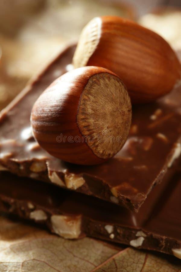 巧克力榛子 图库摄影