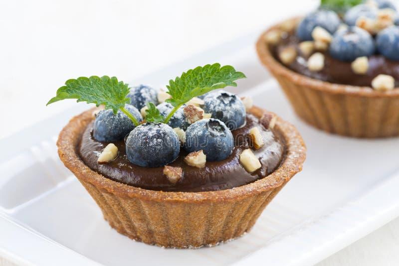 蓝莓水果盆栽
