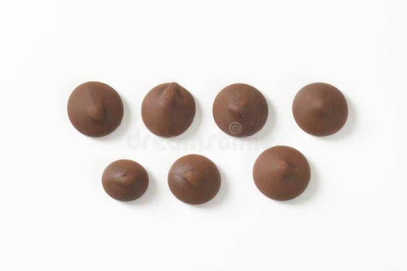 巧克力片 库存图片