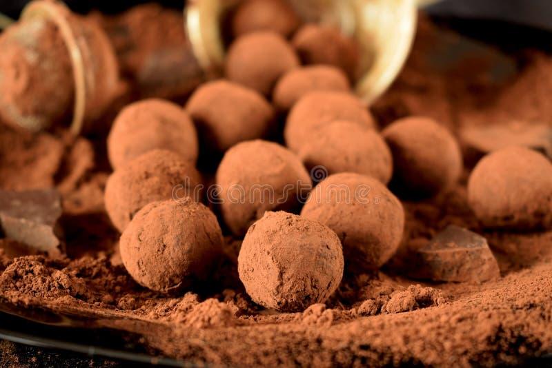巧克力空白查出的块菌 免版税图库摄影