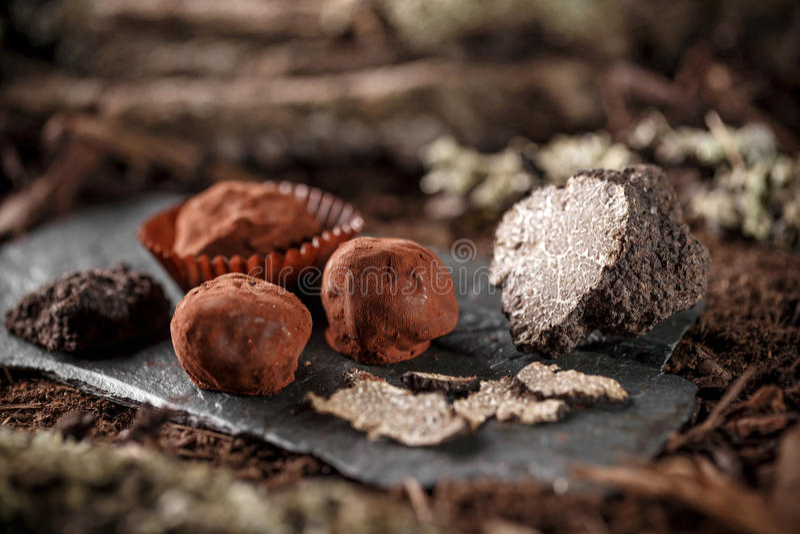 巧克力空白查出的块菌 库存图片