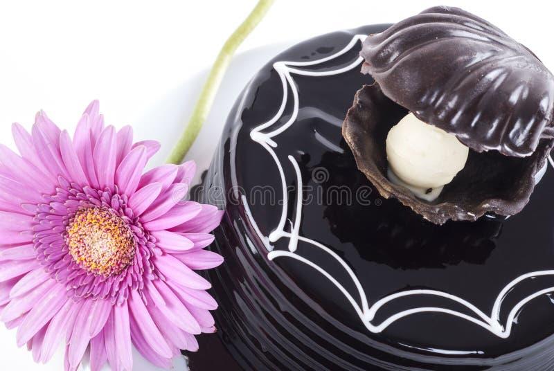 巧克力蛋糕和非洲雏菊 图库摄影