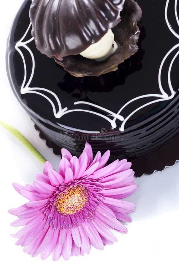 巧克力蛋糕和非洲雏菊 库存图片