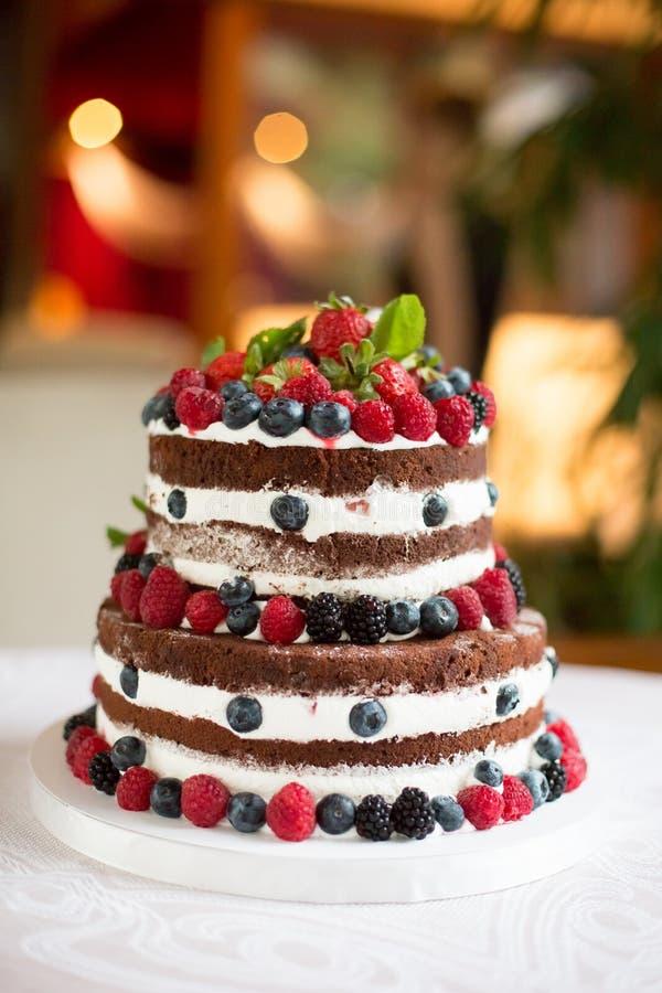 巧克力蛋糕用新鲜的浆果 免版税库存照片