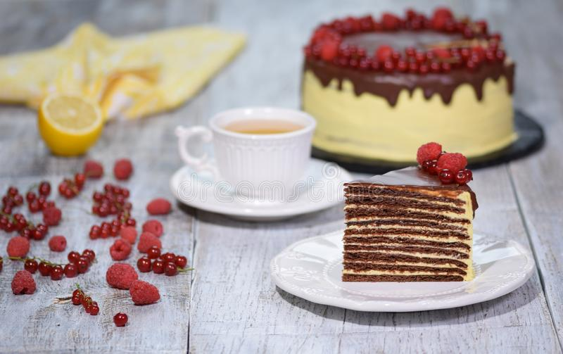 巧克力蜂蜜夹心蛋糕Medovik 库存图片