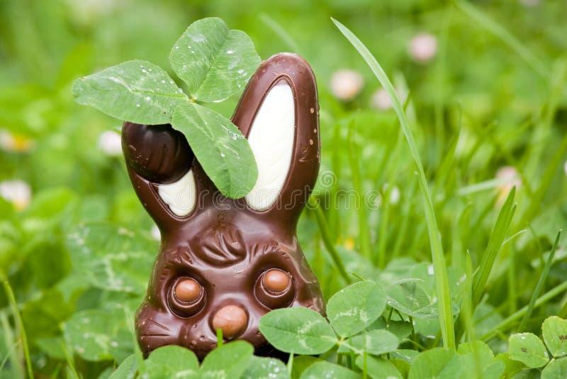 巧克力隐藏的兔子 免版税库存照片