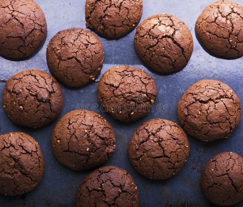 巧克力风味曲奇饼 免版税图库摄影