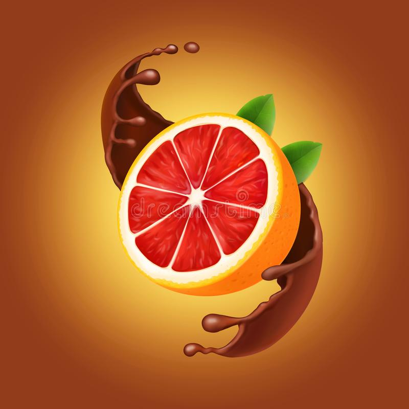 巧克力飞溅用葡萄柚 可可粉或螺旋流的巧克力牛奶和柑桔 皇族释放例证