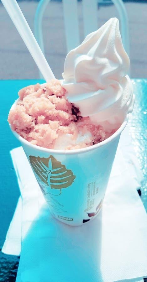 巧克力饼干香草冰淇淋 图库摄影