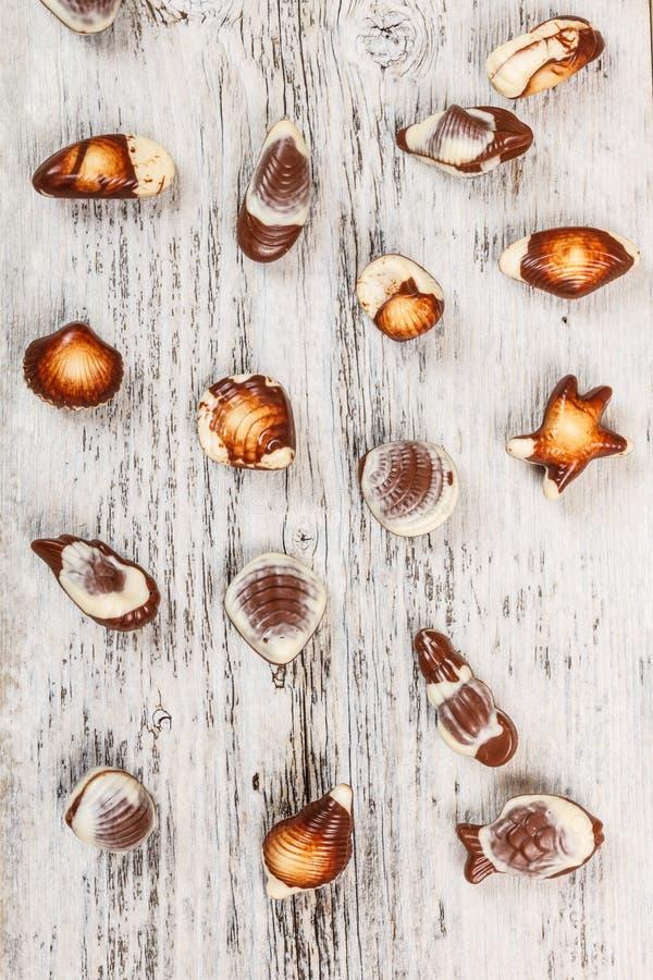 巧克力贝壳 免版税库存图片