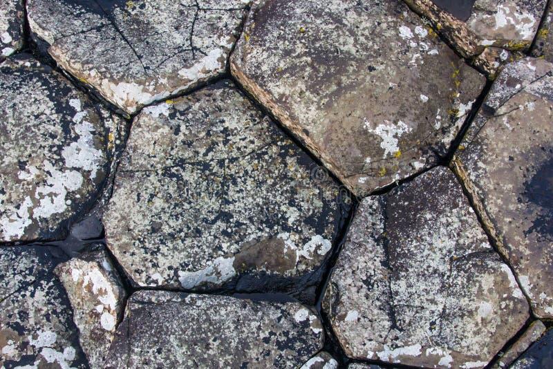 巨人堤道石头 库存图片