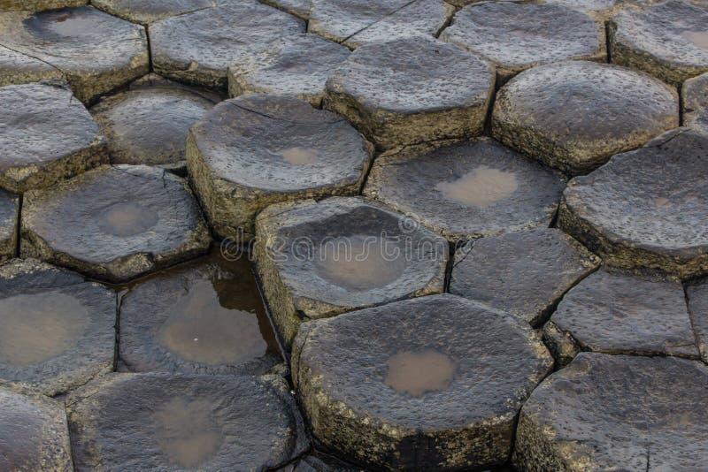 巨人堤道石头 免版税图库摄影
