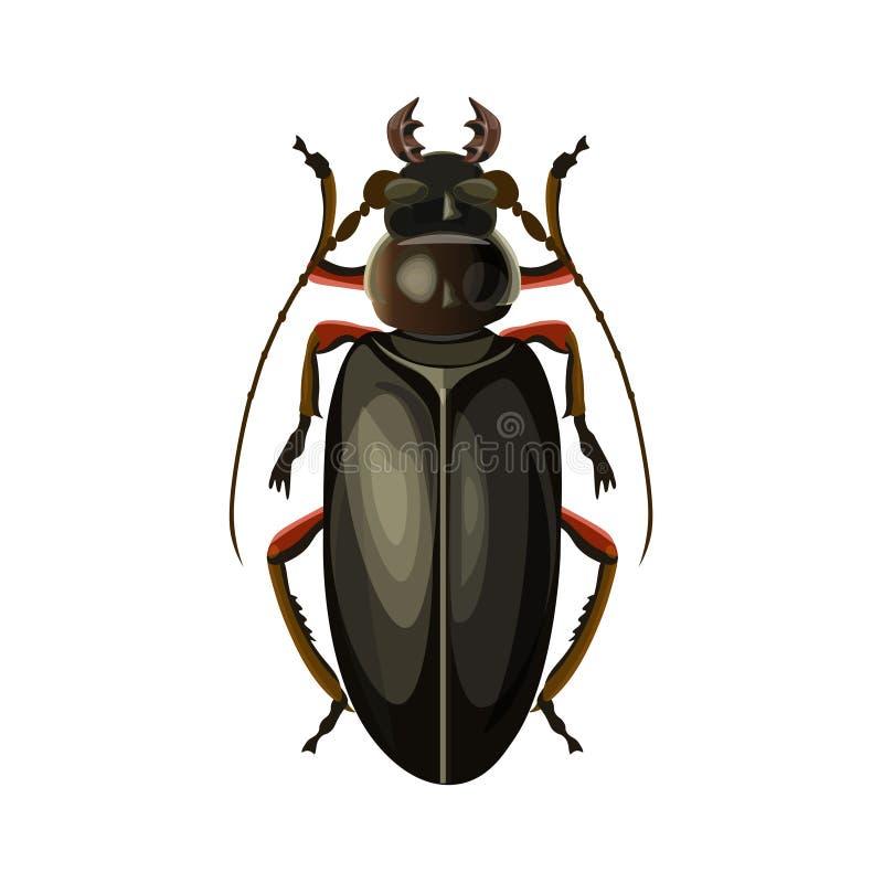 巨人甲虫传染媒介 向量例证