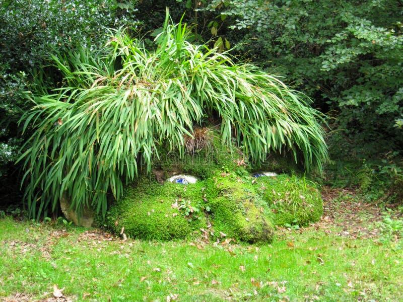 巨人的头, Heligan失去的庭院  库存图片