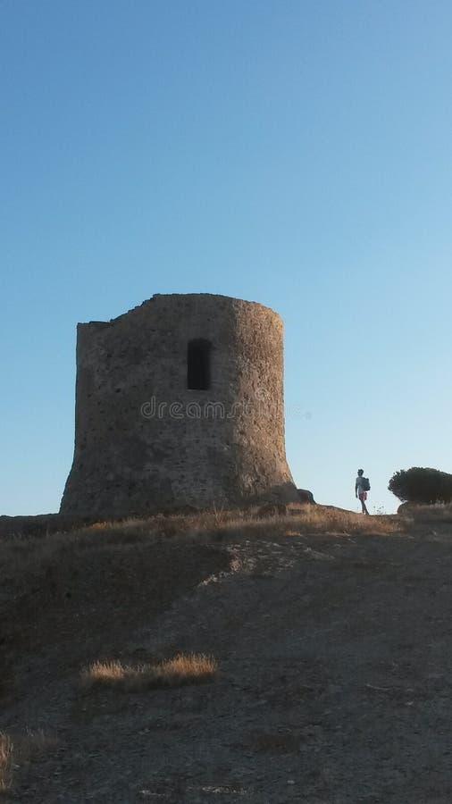 巨型塔 免版税库存照片