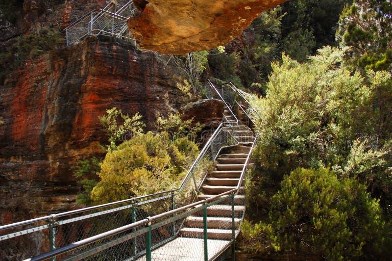 巨型楼梯在蓝山山脉, Katoomba,澳大利亚。 免版税库存图片