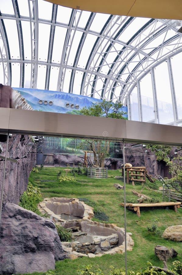 巨型澳门熊猫亭子 库存照片