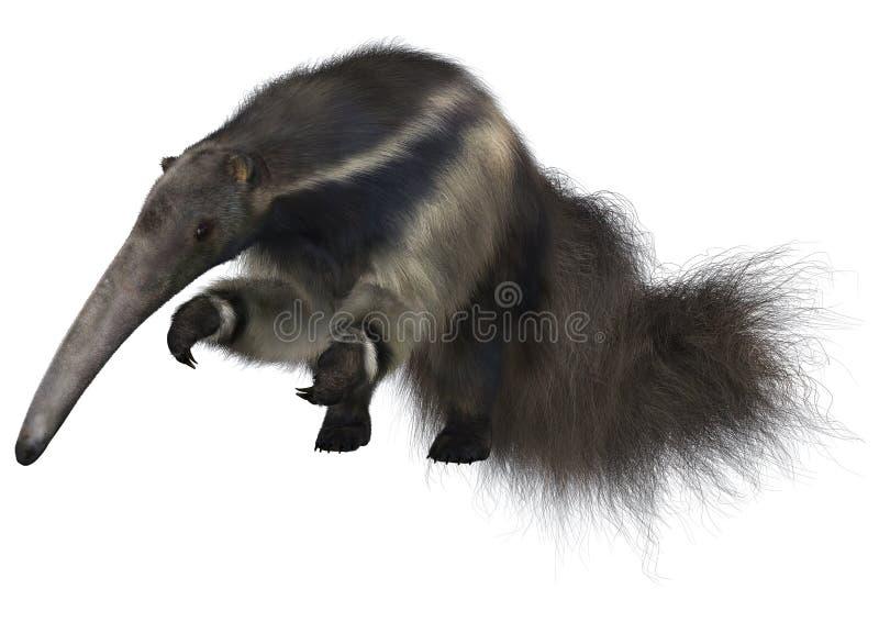 画巨型现有量水彩的食蚁兽 向量例证