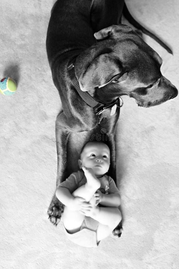 巨型婴孩 免版税库存图片