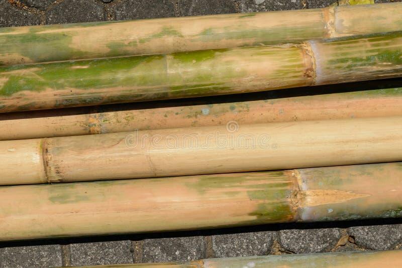 巨大和为在地面安置的建筑黄色竹树干做准备 库存照片