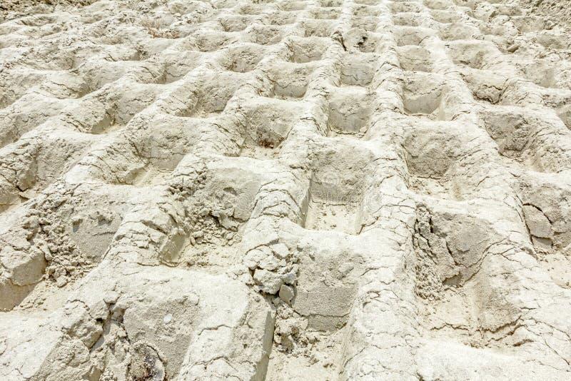 巨大的压路机踪影有钉的变紧密土壤在buil 库存图片