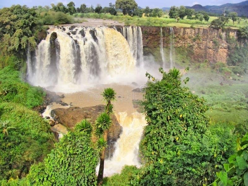 巨大的河瀑布 免版税库存照片