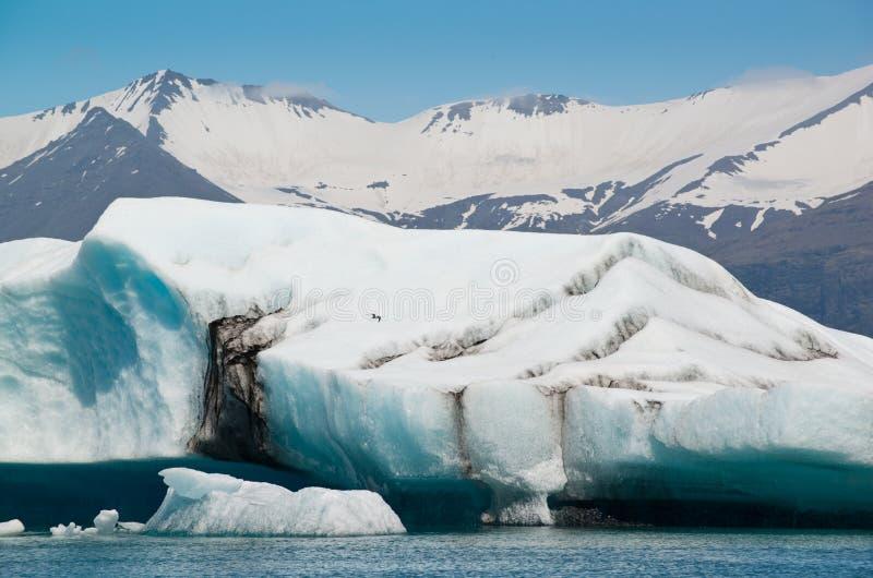 巨大的浅兰的冰山在冰盐水湖的,冰岛冰川湖 库存图片