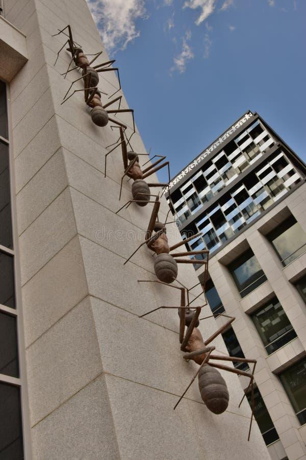 以巨大的蚂蚁为特色的设施攀登墙壁 免版税图库摄影