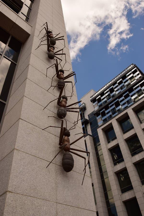 以巨大的蚂蚁为特色的设施攀登墙壁 库存照片