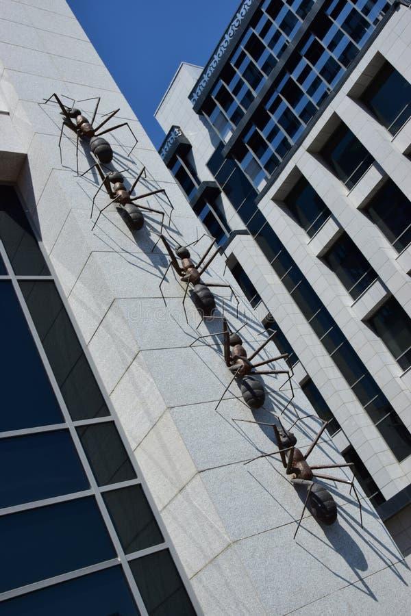 以巨大的蚂蚁为特色的设施攀登墙壁 免版税库存照片