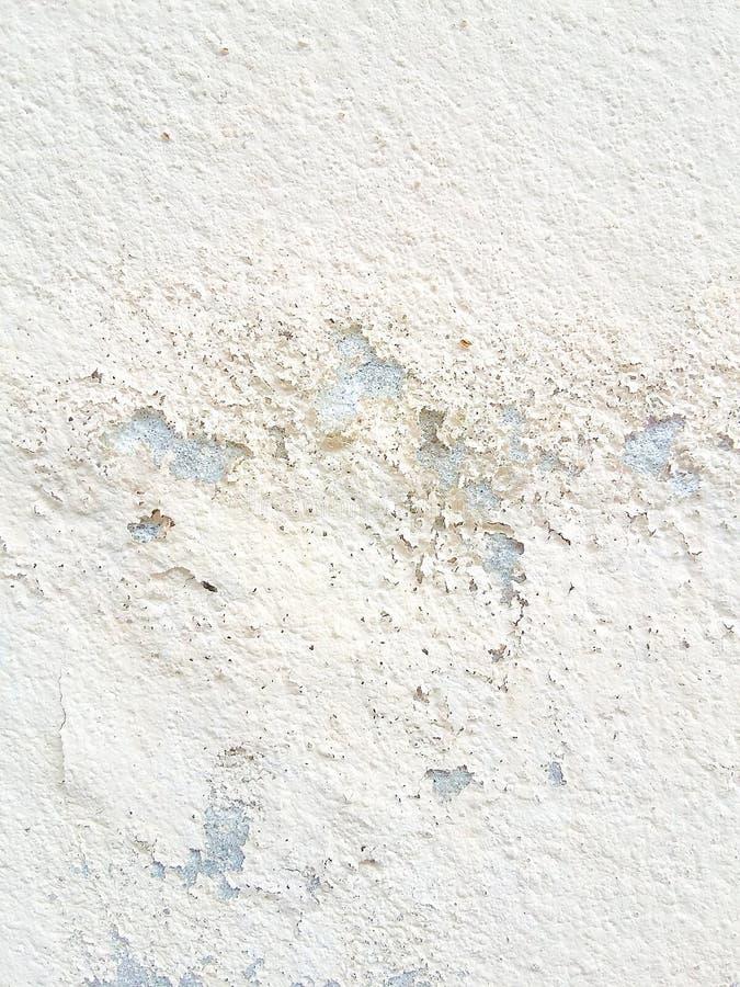巩固老纹理白色颜色地板墙壁背景 图库摄影