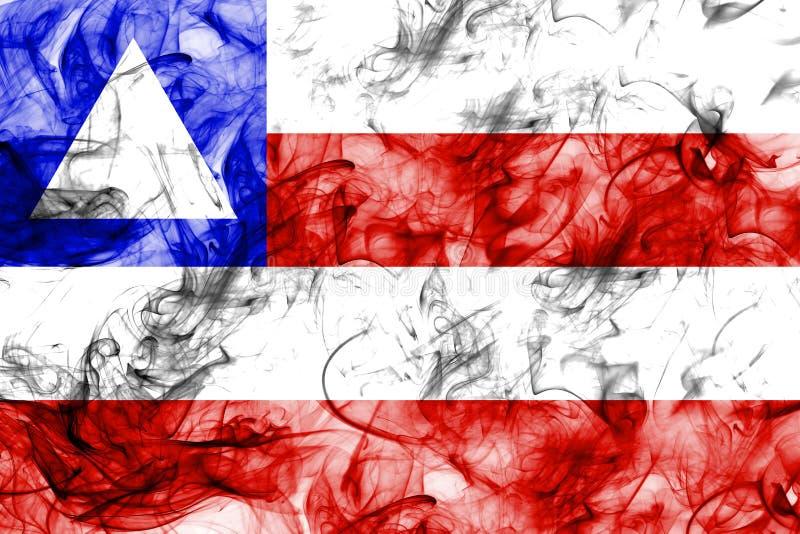 巴伊亚烟旗子,国家的巴西 库存例证