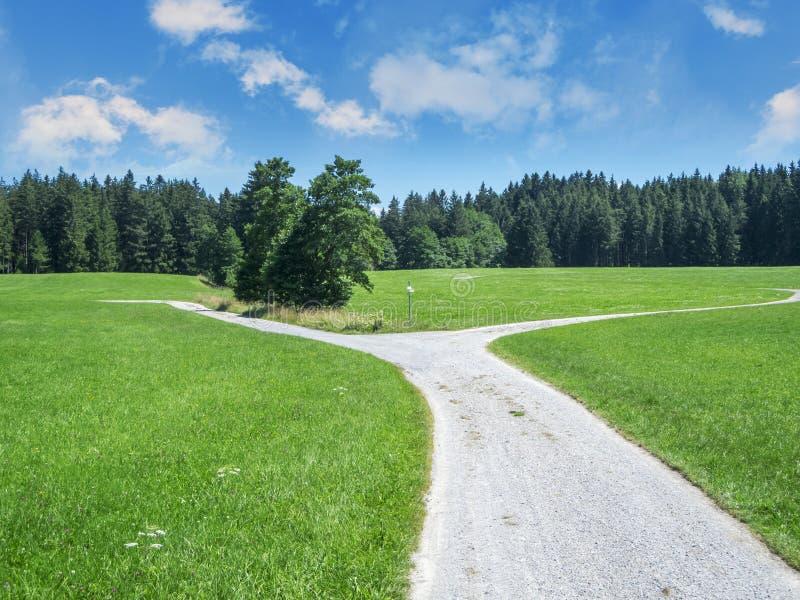 巴伐利亚的公路岔路口与林边 库存照片