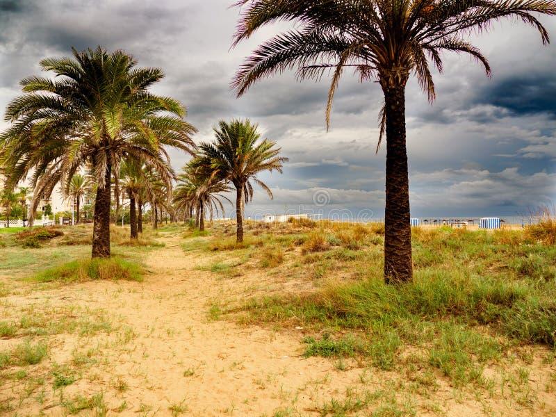 巴伦西亚地中海西班牙的Gandia playa nord海滩 库存图片
