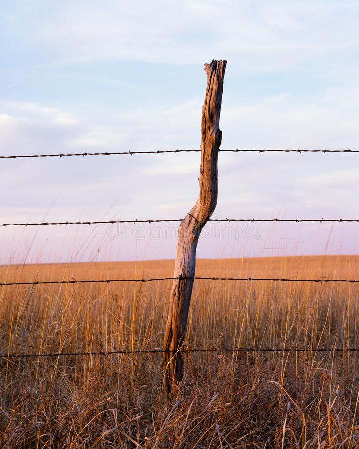 巴勃导线和木篱芭岗位在堪萨斯大草原 免版税图库摄影
