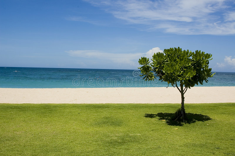 巴厘岛平静 库存图片