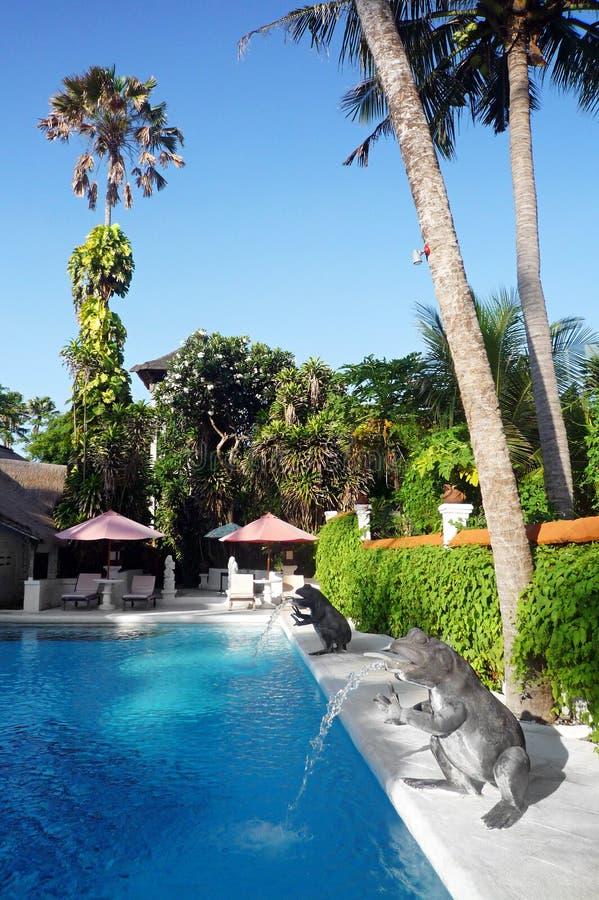 巴厘岛旅馆池热带手段的游泳 免版税库存图片