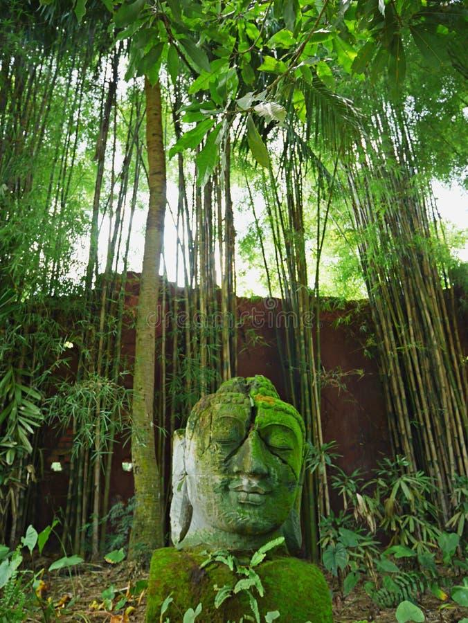 巴厘语神象,精神在巴厘岛 免版税库存照片