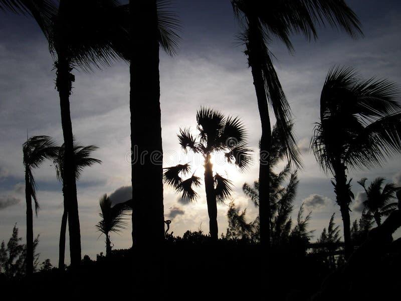 巴哈马日落 库存图片