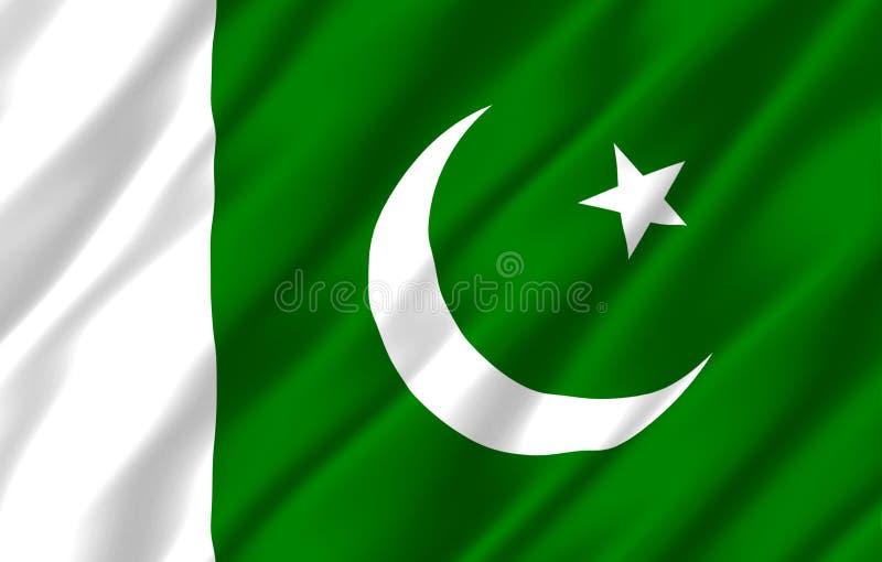 巴基斯坦现实旗子例证 向量例证
