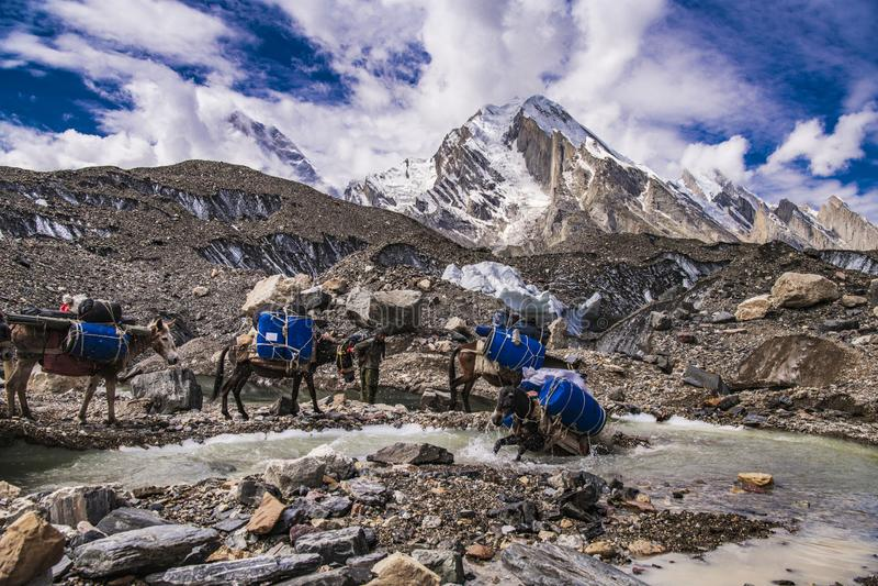 巴基斯坦迁徙的喀喇昆仑山脉K2 免版税库存照片