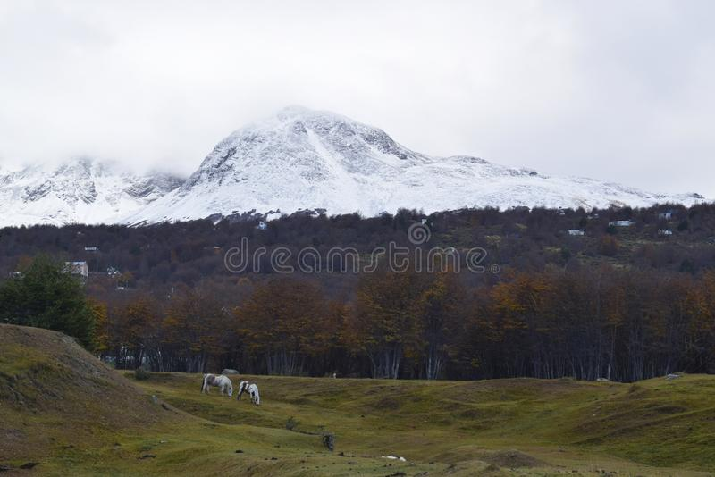 巴塔哥尼亚阿根廷南部的山在乌斯怀亚,火地群岛 库存照片