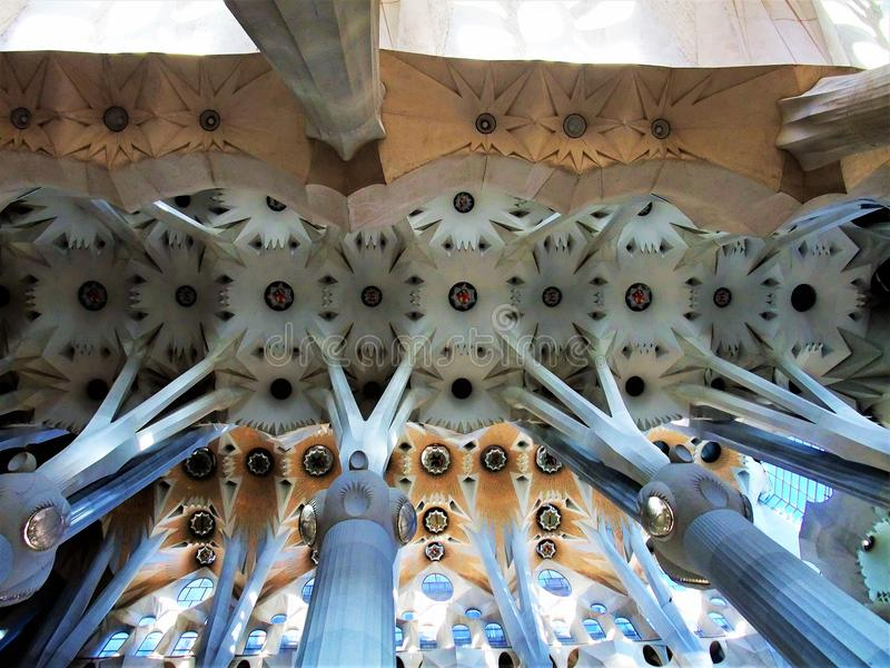 巴塞罗那大教堂西班牙美好的内部天花板  免版税库存图片