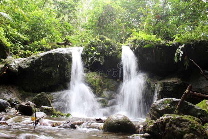 巴布亚新几内亚瀑布 免版税库存图片